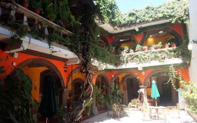 More pics from San Miguel de Allende