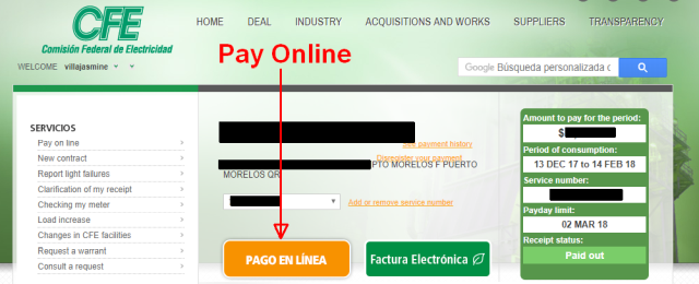 The trials and tribulations of paying our CFE (Electric) bill online